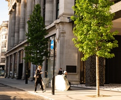 Trees planted outside Selfridges department store