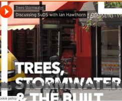 GreenBlue Urban Ltd: Podcast: Trees, stormwater and the built environment