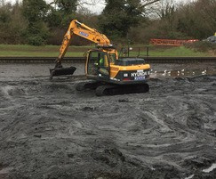 Bank clearing and de-silting of a lake