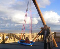FHS Pendulum Swing in robinia 904622100R
