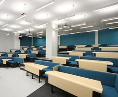 Bespoke Bench Seating Lecture Theatre