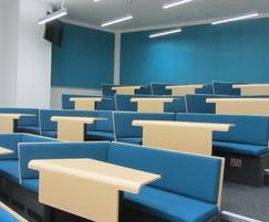 Bespoke Bench Lecture Theatre with curved desking