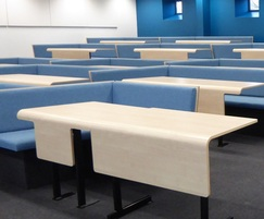 Bench seating for lecture theatre