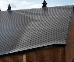 Diamond retro-style fibre cement roof slates