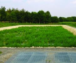 ARM Ltd: Award-winning passive reed beds - it's not all about FBA
