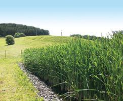 Aerated reedbed at Eden Valley Mineral Water Company
