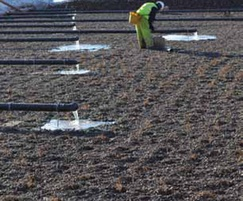 Saturated Vertical Flow Aerated Wetland Systems