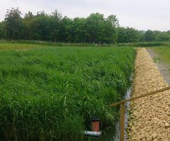 Unsaturated vertical flow (VF) reedbed system