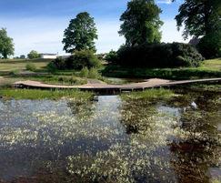 Submerged boardwalks at Popeye's Park wildlife area