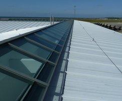 Skyline Box patent glazing system