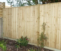 Closeboard green fencing with post caps