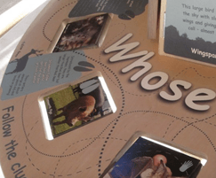 Interactive table in visitor centre