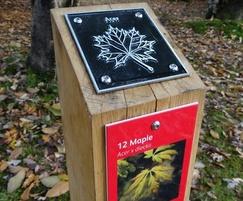 Rubbing plaque trail post