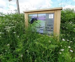 Oak sign Norfolk Wildlife Trust
