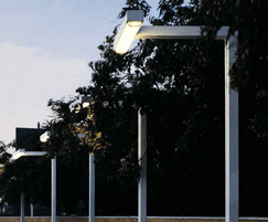 The support structure and luminaire form a single piece