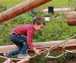 Calverley Grounds Climbing