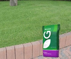 A22 grade 'A' low maintenance grass seed