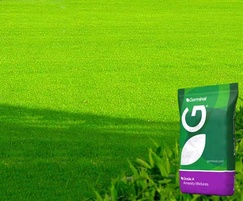 A24 grade 'A' Wear & Tear grass seed