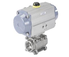 Type 8805 ball valve