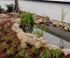 Biodiverse green roof - Bradford University
