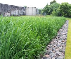 Reedbeds, a natural wastewater treatment system
