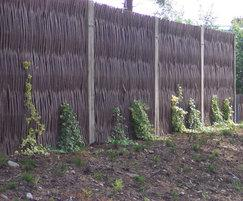 Green Barrier™ screen in woven willow with climbers