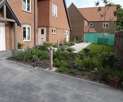 Planting for a retirement village