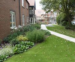 Landscaping for a retirement village