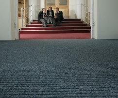 Battleship Hippo Contract Carpets For Entrances