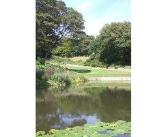 St Leonards gardens restoration and planting